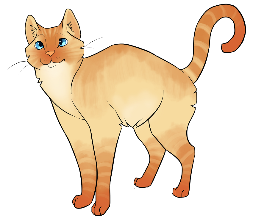 Babs (Captain Cooper's cat)
